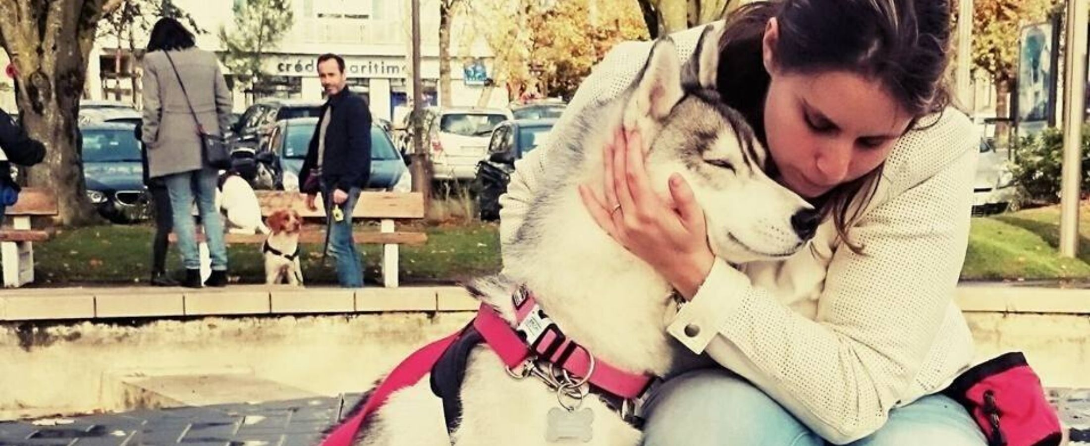 Comment bien choisir la personne qui va garder mon chien ?
