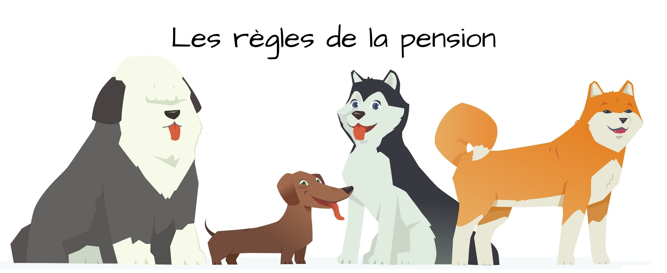 Les règles de la pension canine changent.