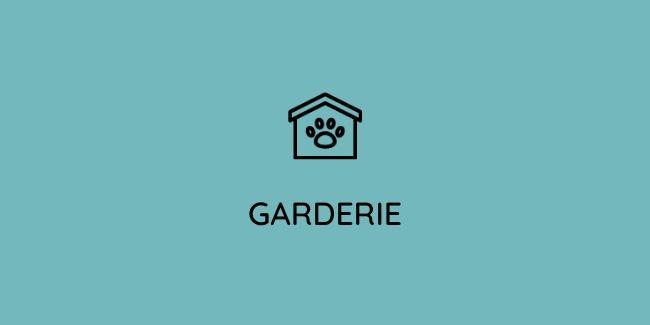 Une garderie pour chien en Vendée pour une après-midi de détente canine.